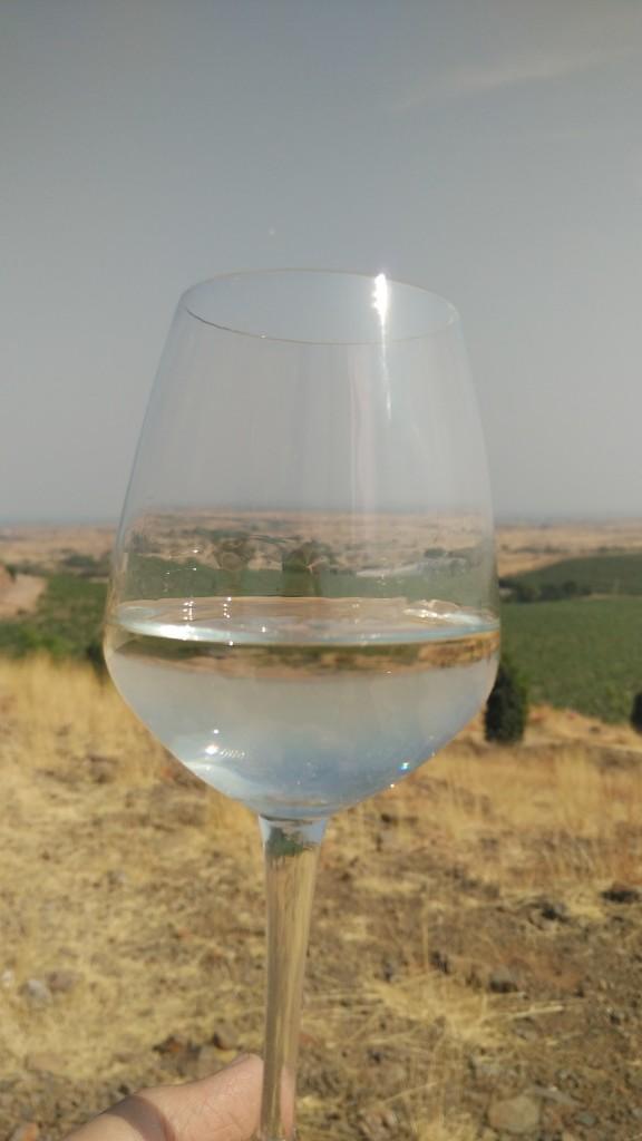 wine tour india